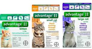 Advantage Ii Dosage Chart For Cats Best Flea Treatments For Cats Top 8 Drops Pills Sprays