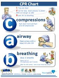 Free Printable Cpr Chart Free Cpr Chart Wicklow Gaa Games Development Building A