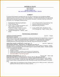 Executive Summary Resume Example Fresh Executive Summary Example