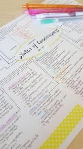 school stress essay report
