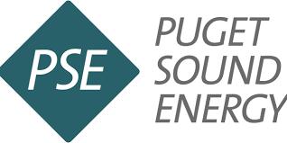 Puget Sound Power And Light Company Puget Sound Energy Names Mary E Kipp As President Ilovekent