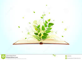 vector ilration of plant growing on open book