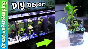 Decorative Betta Fish Bowls BETTA FISH tank decorations DIY Aquarium Plant Planters YouTube 44
