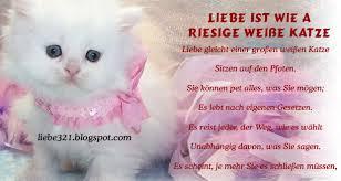 Liebe Ist Wie A Riesige Weiße Katze Top 6 Schöne Liebesgedichte