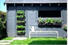 herb wall planter indoor indoor herb garden wall living walls herbs herb wall garden indoor indoor