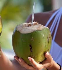 Resultado de imagen para coconut