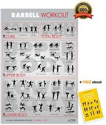 Body Fitness Chart Alpine Choice Barbell Workout Exercise Gym Poster 30x20 Laminated Chart