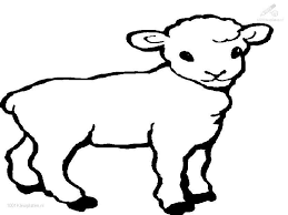 Small Picture Sheep Color Page Animal Coloring Pages Color Lamb 17291