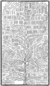how to draw family tree the craft patch family tree art crafts pinterest family tree