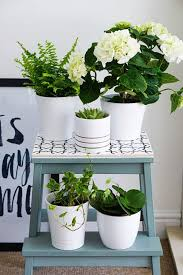 chic ikea s for plants