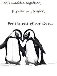 cute penguins in love. Perfect Love Penguin Love Whereu0027s My Penguin Throughout Cute Penguins In Love 4