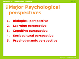 Ways to Improve Your Critical Thinking Skills   College Info Geek Introduction to psychology critical thinking questions   Help in cv writing