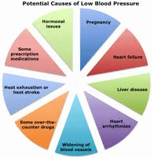 Hypotension Low Blood Pressure Facts And Causes Disabled