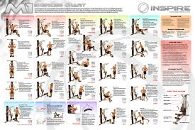 Home Gym Exercise Chart Pdf Gym Workout Chart Total Gym