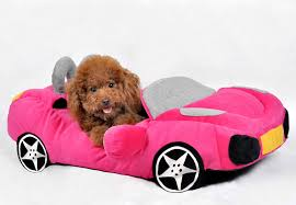 Dog Car Bed Reverse Search Dog Beds and Costumes