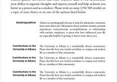 example personal essays essay college narrative examples  example personal essays 19