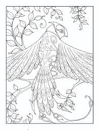 From Magical Kingdom Adult Coloring Book