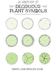 Small Picture Jul 31 Drawing Plant Symbols Practice Sheet Symbols Plants and
