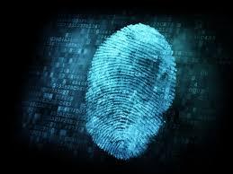 Image result for fingerprint