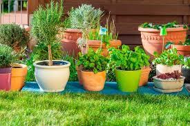 outdoor flower pots for small garden patio or terrace