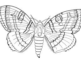 insects pleased with spring day coloring picture for kids pages simple 1024