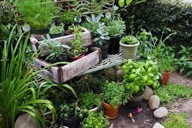 Small Picture Herbal Garden Design Vauxhallenterprisesus