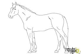 horses drawings in pencil step by step. Contemporary Drawings How To Draw A Realistic Horse  Step 9 In Horses Drawings Pencil By E