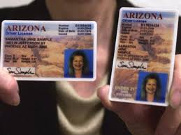 Glitch Licenses On Phoenix Wrong Arizona - Driver's Photos Generates
