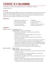 Sample Business Analyst Resume Business Analyst Resume Samples Template Bes Sevte 29