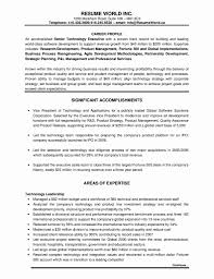 18 Executive Resume Templates Lodelingcom