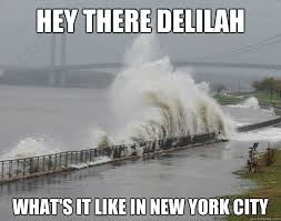 hey there delilah what's it like in new york city - Hurricane ... via Relatably.com