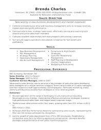Resume Professional Development Resume Professional Development ...