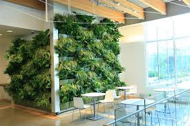 Downtown Market Expands Green Space With Indoor Living Wall The Indoor  Living Wall