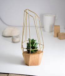 Image Cayuga Dr Elegant Faceted Wooden Planter Geometric Wood Brass Gem For Succulent Cactus And Air Plants Handmade In Eu For Home Pinterest Plants Pinterest Elegant Faceted Wooden Planter Geometric Wood Brass Gem For