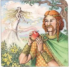 Image result for connla  irish fairy tale