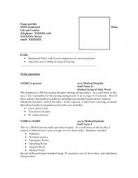 How To Write Resume Format For Jobs Good Chronologicalmbination