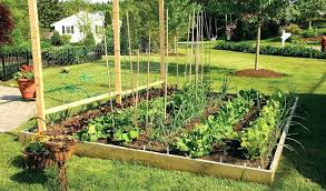 raised bed gardening ideas how to make a raised vegetable garden bed building raised vegetable garden