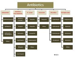 Antibiotic Chart For Nurses Types Of Penicillin Bing Images Pharmacology Nursing