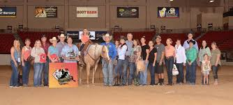Curtis Performance Horses - Posts | Facebook