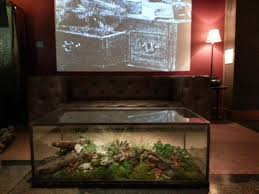 terrarium furniture. Furniture:Best Terrarium Coffee Table Image 10 Best Furniture I