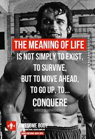 Arnold Schwarzenegger Quotes Gorgeous Arnold Schwarzenegger Quotes The Meaning Of Life Fitness