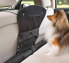 dogs really are man s best friend so naturally that means we want to take them with us everywhere we even take them for rides in our cars just for the fun