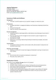 Project Manager Job Description Resume Vast Social Media Coordinator Resume It Project