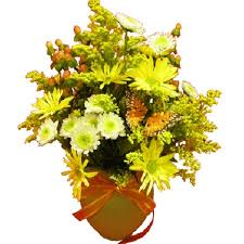florist in tulsa flower delivery a bright and cheerful ortment of yellow daisies white
