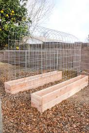 garden box ideas. Interesting Box 30 Creative DIY Raised Garden Bed Ideas And Projects U003e Trellis U0026 For Box D