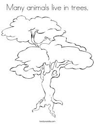 Small Picture 52 best Trees Coloring Sheets images on Pinterest Coloring