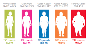 10 Characteristics Of Morbidly Obese Patients
