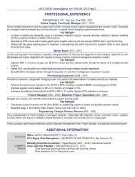 Example Of Professional Resumes Samples Executive Resume Services