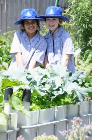 The Stephanie Alexander Kitchen Garden National Program Stephanie Alexander Kitchen Garden Program Kingston Heath