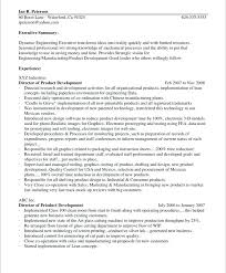 Introduction To An Essay Examples Resume Paragraph Examples